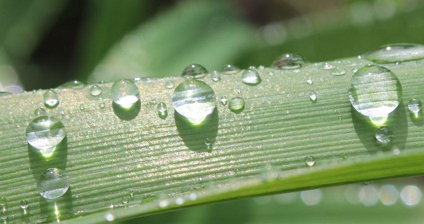 rain season cape verde